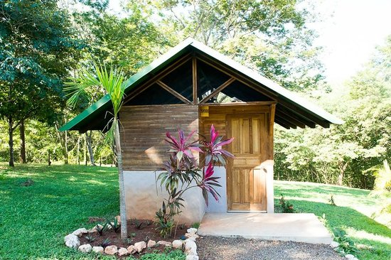 Adorable Jungle cabina $1450 db. all-inclusive
