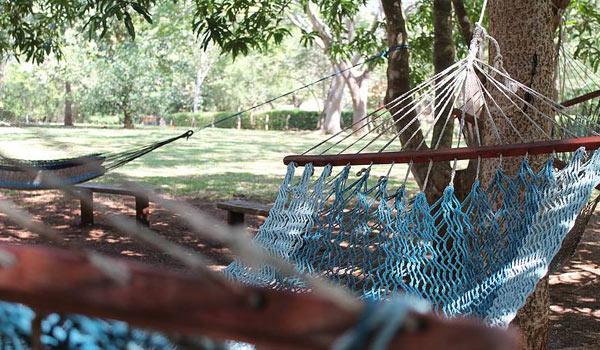 costa rica hammock
