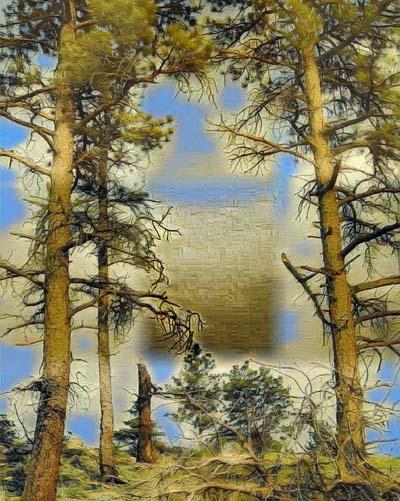 tree - d - 92837027 (1)