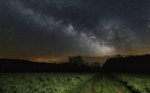 sky-grass-stars-night-wallpaper-preview